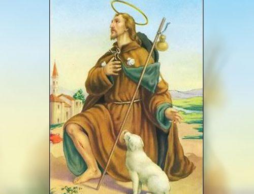 Hoje é Dia de São Roque