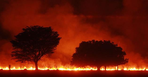 Queimadas são comuns na região em época de tempo seco (Foto: Envolverde)