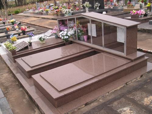 Segundo secretário, sistema contribuirá com usuários do cemitério e ajudará a Prefeitura a economizar (Foto: Divulgação)