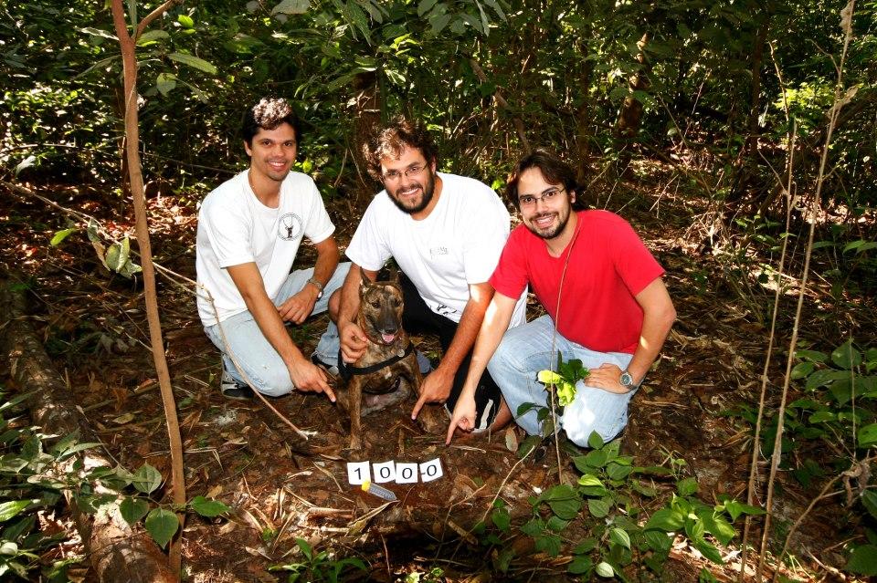 Pesquisadores contam com trabalho da cachorra Granada (Foto: Márcio L. de Oliveira/Nupecce)
