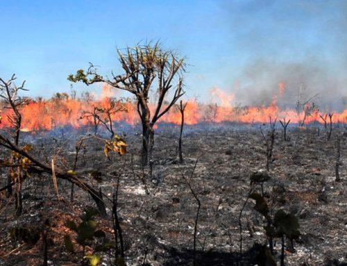 Em plantão policial tranquilo, Jaboticabal não registra ocorrências; Sargento do Corpo de Bombeiros fala das queimadas