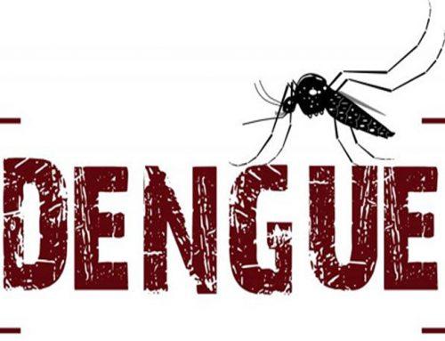 No primeiro semestre de 2020, Jaboticabal teve mais de 1.500 casos confirmados de dengue, segundo estimativa