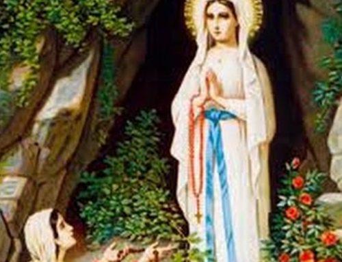 Paróquia de Nossa Senhora de Lourdes e Capela São Francisco de Assis realizam ações sociais em Jaboticabal