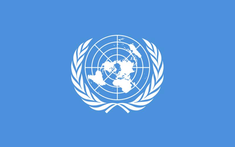 Bolsonaro falará na ONU sobre amazônia