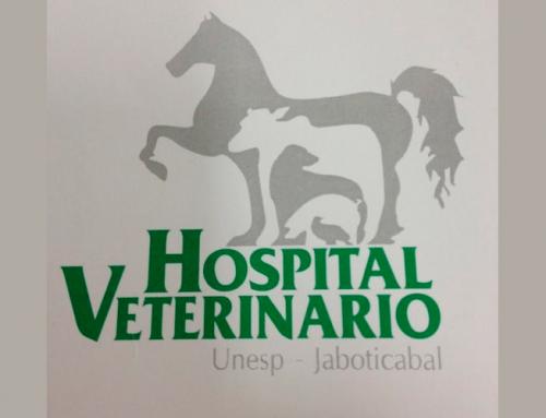 Hospital Veterinário da FCAV/Unesp Jaboticabal retoma suas atividades
